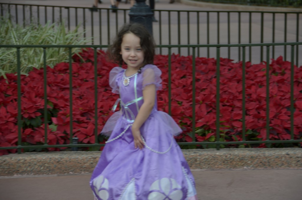 Disney World 020 (2)